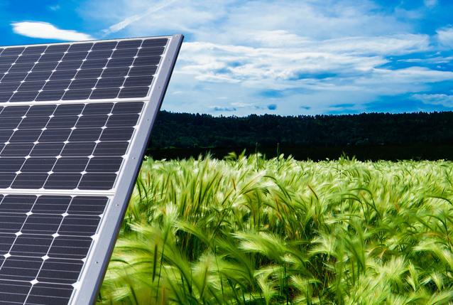 Dala Solenergi – Webbplats